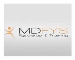MDFys_logo